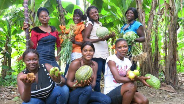 [:en]Can NGOs contribute to the strengthening of small farmers' agriculture in Haiti?Les ONG peuvent-elles contribuer au renforcement de l'Agriculture familiale paysanne en Haïti ?
